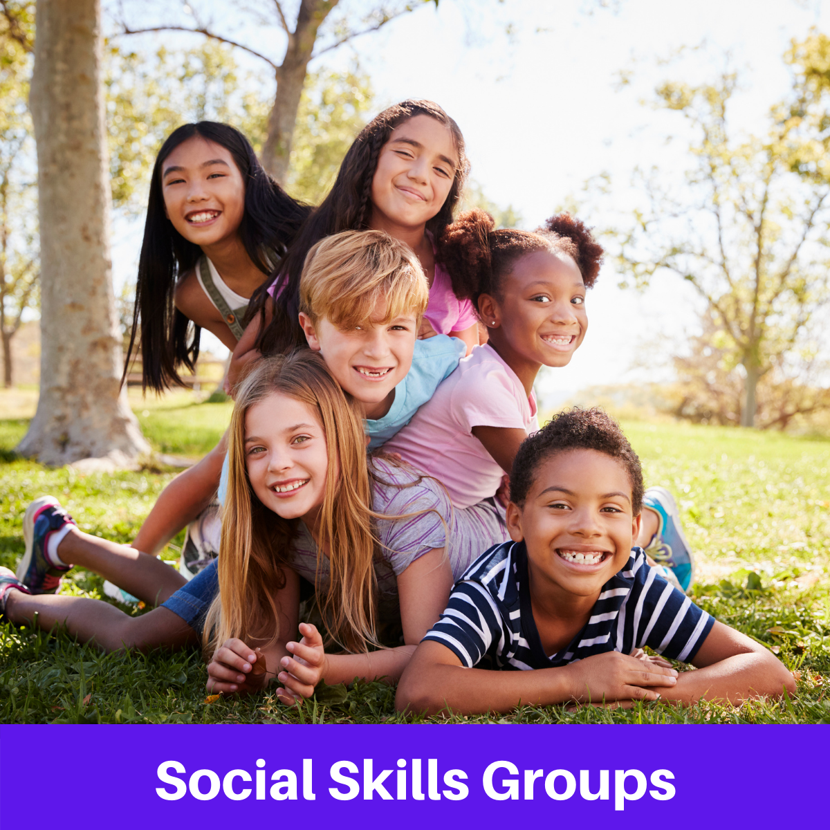 Social Skills Groups for Autism